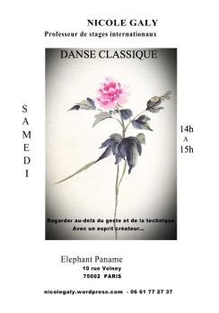 COURS 2013 CLASSIQUE PANAME